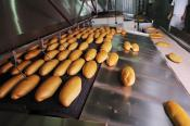 breadfactoryproduction_28471068.jpg